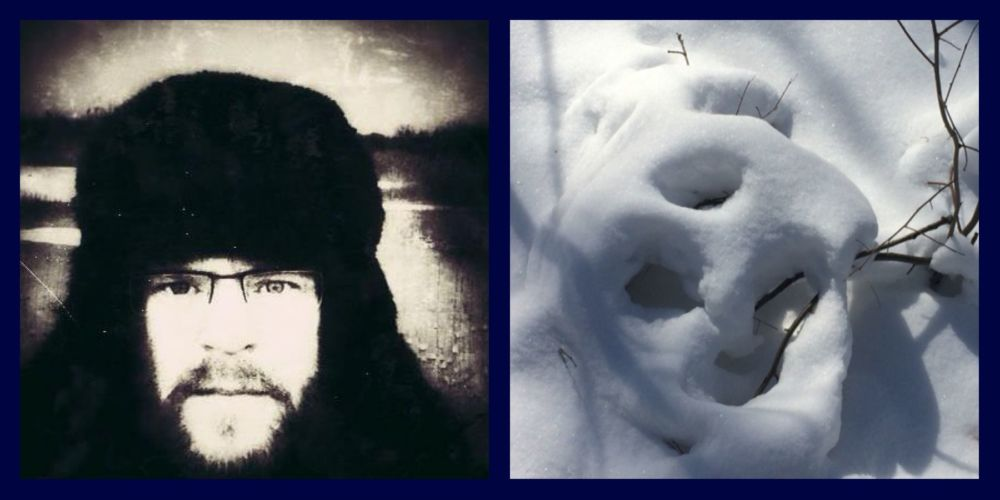 white bear and traveller